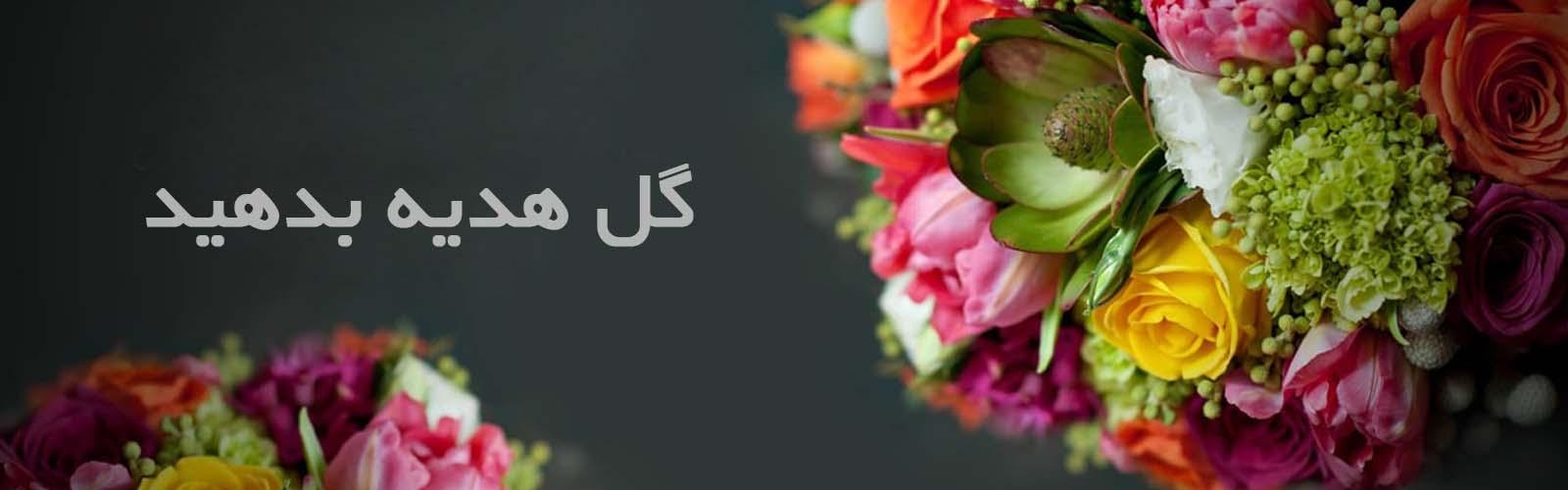 گل و گیاه 3